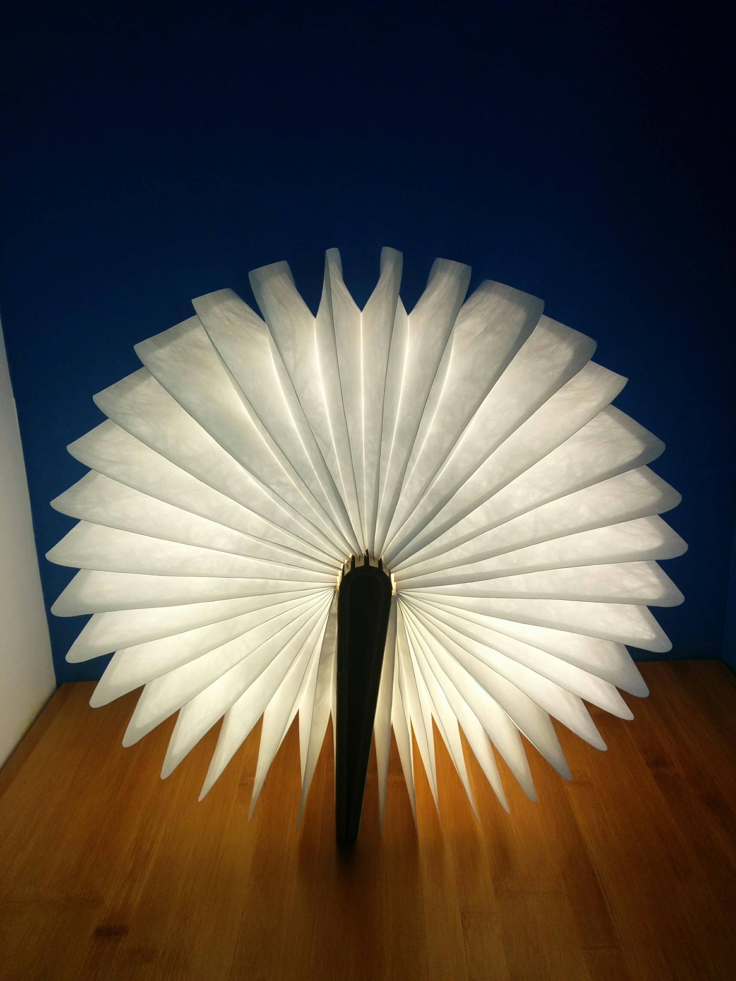 Gravure-laser-bois-livre-lampe
